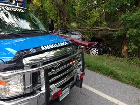A vehicle left the roadway and struck a tree in the 1100 block West Lincoln Highway in Valley Township