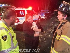 Firefighter/EMT Carro settles the dog down.